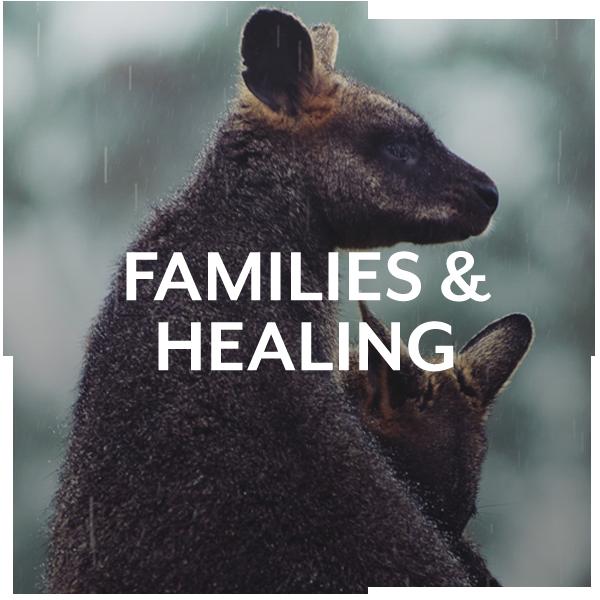 Families & Healing